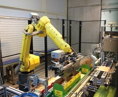 Robotic Case Packaging System